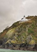 picture of sark  - Coastal scene on Sark Lighthouse Channel Island