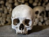 image of catacombs  - Human skulls in the basement crypt - JPG