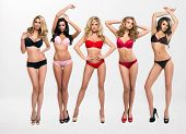 stock photo of charming  - beautiful women in full growth pose in front of the chamber in lingerie - JPG
