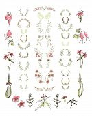 Set of symmetrical floral graphic design elements.