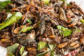 Fried Edible Insects Mix With Green Lime Leaves
