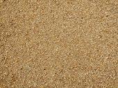 Sawdust