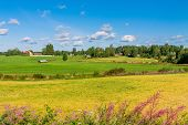 picture of barn house  - houses in a rural landscape in Finland - JPG