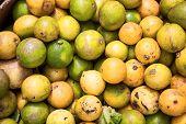 Dirty Unwashed Lemons