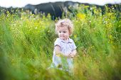 Beautiful Baby Girl With Curly Hair Playing In A Field Of Wild Flowers In Autumn
