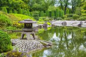 picture of ponds  - Green pond in Japanese garden in Bonn Germany - JPG