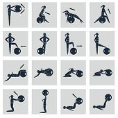 Fitness Ball Icons Set