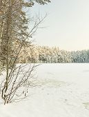Winter Lake In Ice And Snow