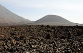 Volcano Field