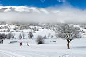 Country-cross Skiing