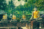 Buddha Statues Ayutthaya Thailand