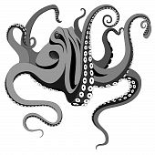 Octopus, Tattoo