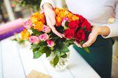 Female florist hands touching fresh rosebuds