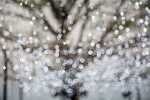 Abstract Photo Of Winter Tree And Glitter Bokeh Lights