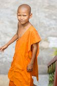 Young monk in wat Leu