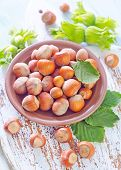image of hazelnut  - hazelnuts on a table - JPG