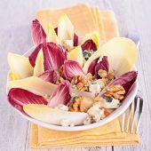 pic of chicory  - chicory salad - JPG