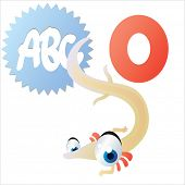 vector isolated cute happy big eyes abc animals: O is for Olm