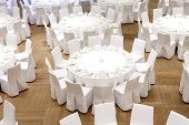 Beautifully Organized Event - Served Festive Tables