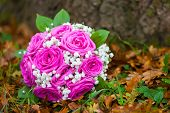 Wedding Flowers Bouquet Pink Rose