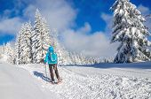 image of down jacket  - Panoramic view of young woman in blue down jacket with backpack walking in snow shoes with sticks in winter mountains scenery - JPG