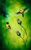 pic of songbird  - pair of songbirds flattering above a distel flower on an emerald green background - JPG