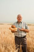 Senior Farmer With Bread