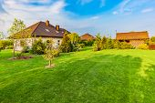 Backyard of a family house. Landscaped garden with spacious area of green mown grass, plants and tre poster