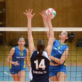 KAPOSVAR, HUNGARY - APRIL 24: Barbara Balajcza (blue 8) in action at the Hungarian NB I. League woma