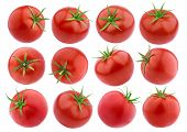 Tomatoes Isolated. Fresh Tomato Set Isolated On White Background With Clipping Path poster