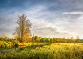 Spring Bright Landscape Of Meadow And Scenery Shore Of River With Trees And Green Grass. Rural Natur poster