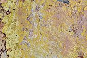 Постер, плакат: Old Wall With Falling Off Paint And Plaster A Few Cracks Paint In Several Layers Layers Of Differ