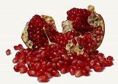 Seeds Spilling Out Of A Pomegranate
