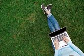 Top View Of Girl Sitting In Park On The Green Grass With Laptop, Hands On Keyboard. Copy Space On Co poster