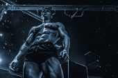 Handsome Young Fit Muscular Caucasian Man Of Model Appearance Workout Training In The Gym Gaining We poster