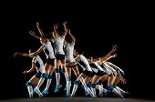 Young Female Volleyball Player Isolated On Black Studio Background. Woman In Sports Equipment And Sh poster