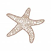 Starfish Icon Isolated On White Background. Starfish Icon Simple Sign. Starfish Icon Trendy And Mode poster