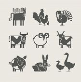 home animal set icon vector illustration