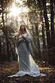 Fantasy Portrait Of Fairytale Beautiful Woman In White Dress In Magic Forest. poster