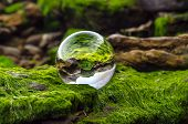 Claer Glass Ball Lens Lies On Stones Covered With Green Mud And Reflects The Landscape Of The World  poster