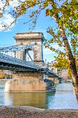 Construction Of The Szechenyi Chain Bridge Over The Danube River In Budapest, Hungary With Fall Tree poster