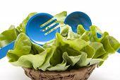 Head salad