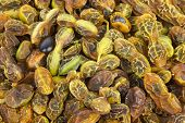 Dried Sophora Japonica  Beans