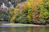Danube Valley At Danube Breakthrough Near Kelheim, Bavaria, Germany In Autumn With Trees With Red, Y poster
