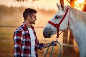 Happy man bonding with his horse, human equine relationship poster