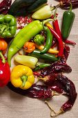 picture of poblano  - Stock image of chilli pepper still life very colorful an varied - JPG