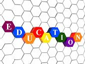 Education In Color Hexagons In Cellular Structure