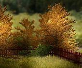 Autumn Garden Premade Background