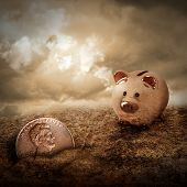 Lucky Piggy Bank Finds Lost Penny In Dirt