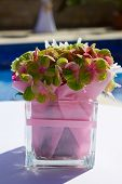 Green Blooming Hortensia Flowers In A Vase On A Table